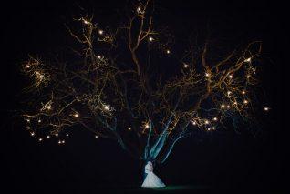 crockwell-farm-eales-wedding-663
