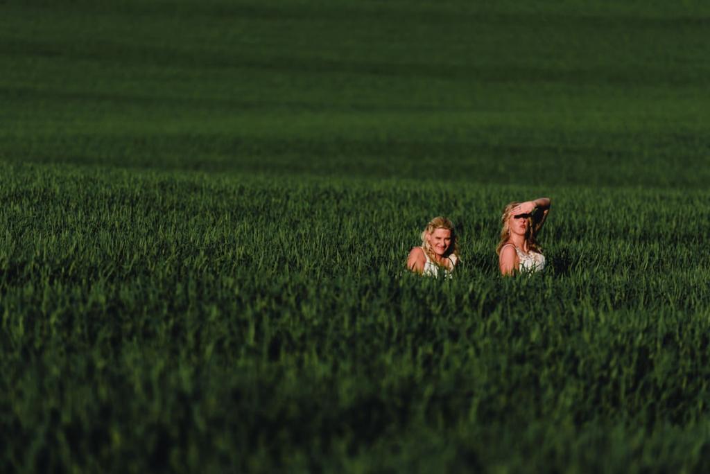 Crockwell Farm 54